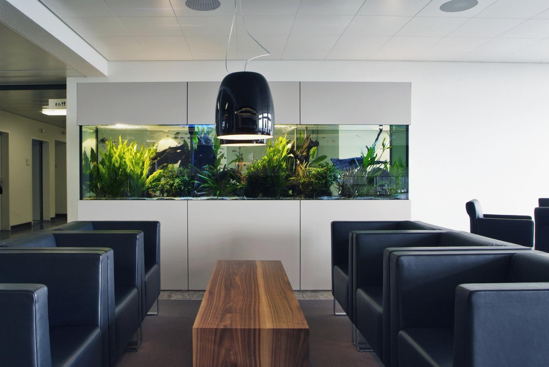 salem schneider innenausbau ag. Black Bedroom Furniture Sets. Home Design Ideas